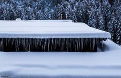 垂悬从积雪的瑞士山中的牧人小屋屋顶的icicicles行  库存照片