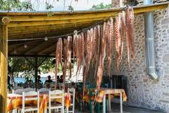 垂悬Thassos Aliki餐馆的希腊生活章鱼 免版税图库摄影