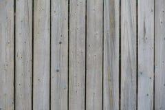 垂直的与树皮甲虫踪影的葡萄酒灰色板作为背景的 库存照片