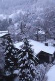 垂直的冬天横向在提洛尔阿尔卑斯,奥地利 库存照片