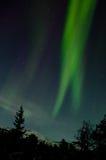 垂直的北极光 免版税库存图片