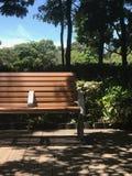 垂直的室外木庭院长凳和树在公园 免版税库存图片