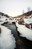 垂直的冬天环境美化的结冰的河流动 免版税库存照片