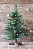 垂直的圣诞树,年迈的木背景,雪花 库存图片