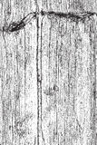 垂直的干燥木头 库存照片