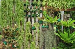垂直的庭院 免版税库存照片
