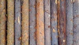 垂直的木日志背景构造了样式板条墙壁 库存图片