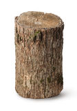 垂直的树桩 免版税库存照片