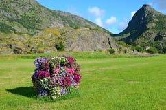 垂直的花床在草甸 图库摄影