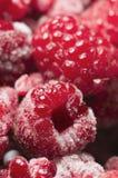 垂直的莓 免版税库存照片