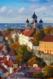 垂直的鸟瞰图老镇,塔林,爱沙尼亚 库存图片