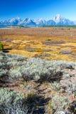 垂直的Teton范围 图库摄影