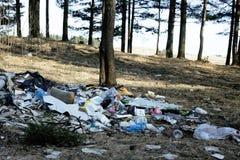 垃圾在森林里,环境的问题 免版税库存图片