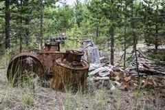 垃圾在森林里 免版税图库摄影
