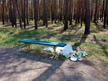 垃圾在野餐以后离开在森林 免版税库存照片