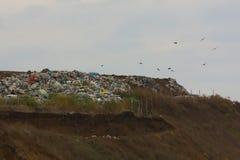 垃圾堆 免版税库存图片