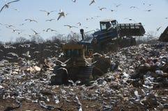 垃圾填埋工作 库存图片