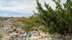 垃圾山在树以后的 慢的行动 股票录像