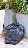 垃圾桶袋子塑料黑色为回收在花盆树旁边被安置的废物 免版税库存照片