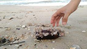垃圾洗涤在宋卡海滩 库存照片