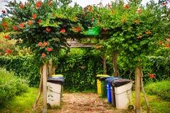垃圾的分类收集的垃圾箱在夏天停放 免版税库存图片