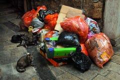 垃圾袋子 免版税库存照片