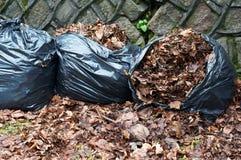 垃圾袋 免版税库存照片
