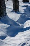 垄沟部分地埋没与雪 免版税库存图片