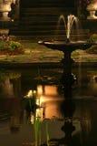 垫座池塘水 库存照片