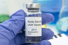 埃伯拉疫苗研究 库存图片