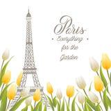 埃佛尔铁塔和郁金香花束 库存照片