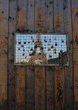 埃佛尔铁塔通过一个自然边界 免版税库存照片