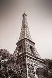埃佛尔铁塔,巴黎 免版税库存图片
