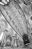 埃克塞特,英国大教堂内部 免版税库存照片