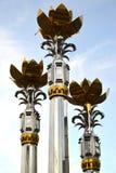 埃利斯塔,俄罗斯 三朵莲花的片段以天空为背景的 卡尔梅克共和国 免版税库存照片