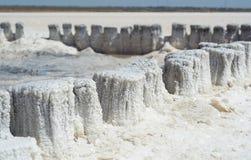 埃利通湖水晶盐  库存图片