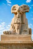 埃及公羊带头的狮身人面象 库存图片