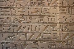 埃及历史记录 库存图片