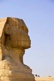 埃及吉萨棉极大的狮身人面象 免版税库存照片