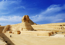 埃及吉萨棉狮身人面象 库存图片