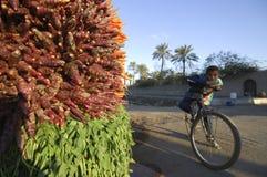 埃及在路,开罗, 0的埃及旁边的男孩观看的红萝卜 库存图片
