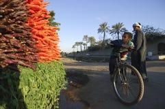 埃及在路,开罗, 0的埃及旁边的男孩观看的红萝卜 免版税库存照片