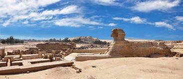 埃及是狮身人面象的一幅充分的全景在吉萨棉 库存照片