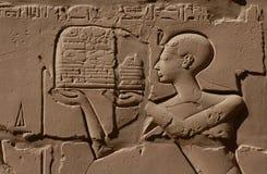 埃及替补 免版税库存图片