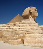 埃及极大的狮身人面象 库存照片