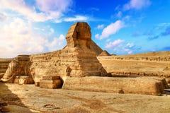 埃及狮身人面象在吉萨棉 免版税库存照片