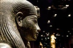 埃及狮身人面象雕象的外形 免版税图库摄影