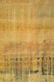 埃及纸莎草纹理 免版税库存照片