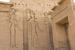 埃及象形文字和图画在墙壁和专栏上 埃及语言、古老神象形文字的生活和人们 免版税图库摄影
