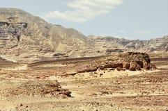 埃及,西奈的山离开 免版税库存图片